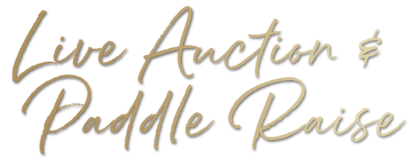 Live Auction-paddle-raise-gradient